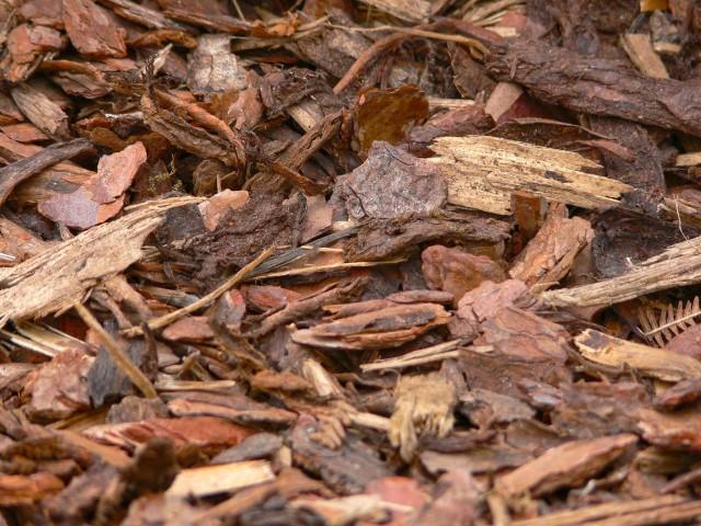 Mulch - Mulch - Mulch